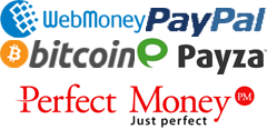 Perfect money rdp