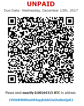 BitCoin invoice for RDP