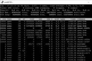 Linux/Windows VPS